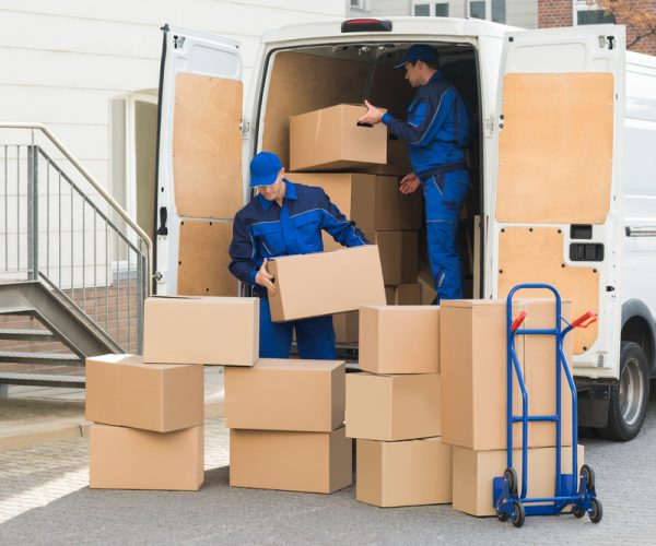 removalist newcastle